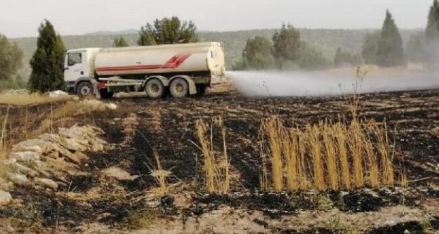 Bozköy kasabasında ekili arazi küle döndü