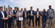 Deneme ekimi yapılan 6 yerli ve milli çeşidin hasadı yapıldı