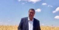 """Gürer: 'Buğdayda tehlike çanları çalıyor"""""""