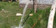 20 Yıllık Su Borcu Köylüyü Susuz Bıraktı!