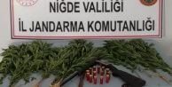 Niğde'nin Köylerinde Kenevir Ele Geçirildi!